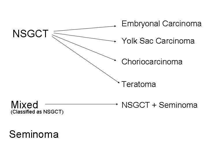 human chorionic gonadotropin pills