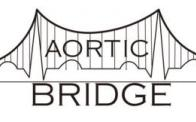 Aortic Bridge-Patient, Family, Friend, Caregiver, Health Care Provides and Physician Education and Support Group
